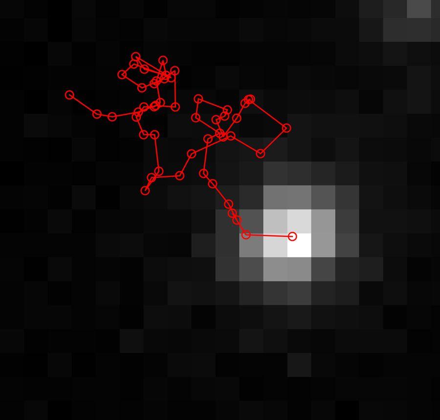 KAUST_fig4_w.jpg