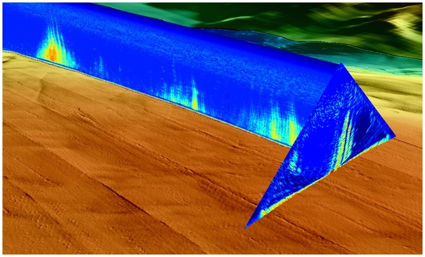 A 3D compilation of bathymetry data processed by SonarScope