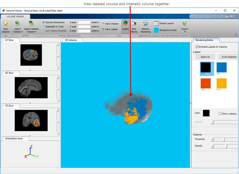 Volume Viewer app, which shows 3D volumetric data and 3D labeled volumetric data.