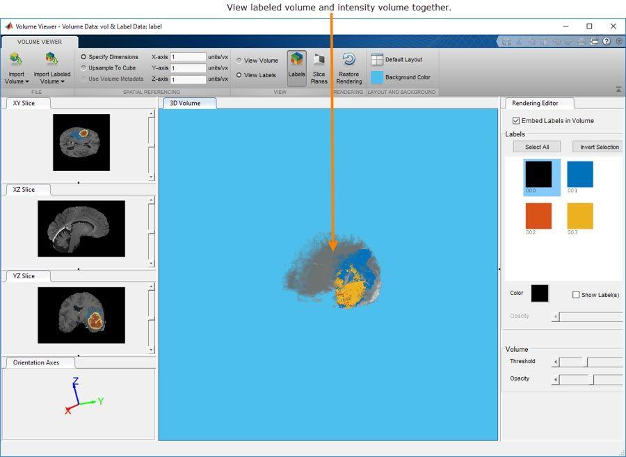L'application VolumeViewer vous permet de manipuler et d'afficher des données volumétriques3D ou des données volumétriques3D étiquetées.